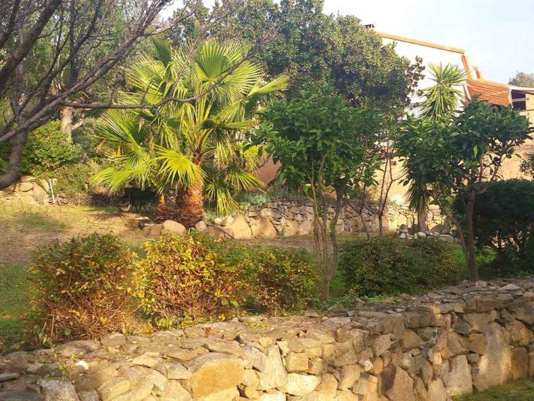 Le jardin côté droit du studio